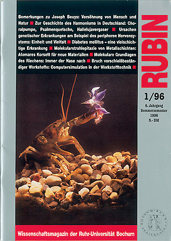 1996_1-rubin_cover.jpg
