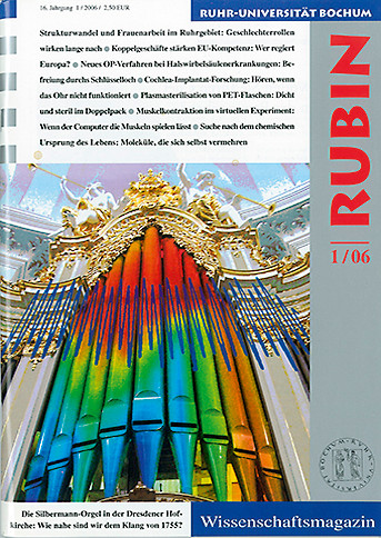 2006_1-rubin_cover.jpg