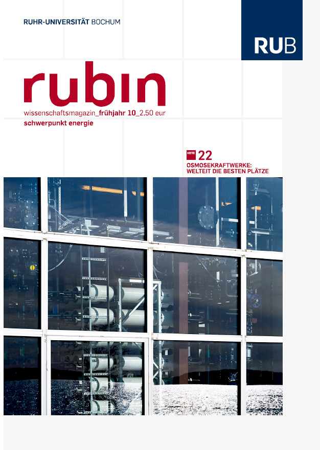2010-fruehjahr_rubin_cover.jpg