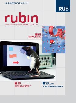 2011-winter_rubin_cover.jpg