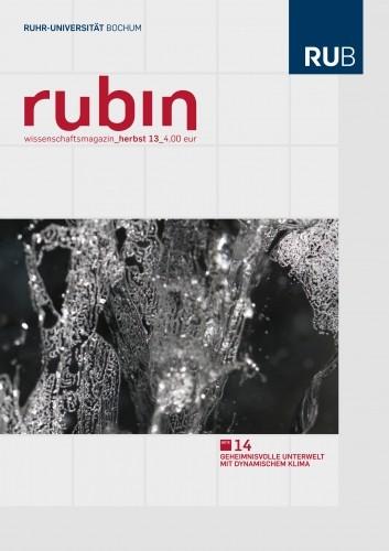 2013-herbst_rubin_cover.jpg