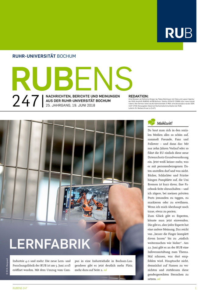 Cover der Rubens 245