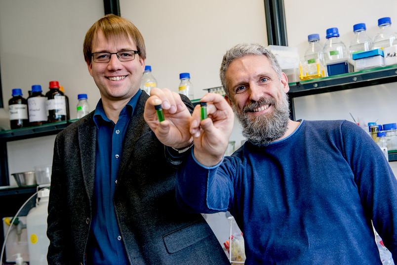 Prof. Dr. Robert Kourist (links) und Dr. Marc Nowaczyk sind sich sicher, dass ihre gentechnisch veränderten Cyanobakterien helfen werden, die chemische Industrie sauberer zu machen.