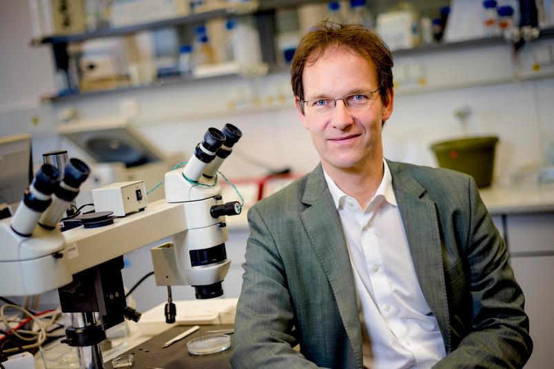 Prof. Dr. Wolfgang Linke von der RUB-Abteilung für Kardiovaskuläre Physiologie wagt eine Zukunftsprognose für seine Forschungsdisziplin.