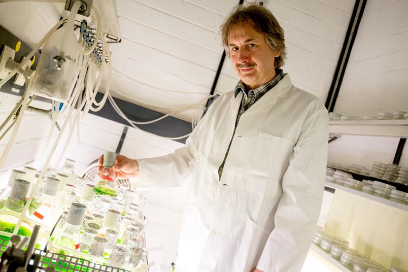 Ein Forscher im weißen Kittel hält einen Erlenmeyerkolben mit einer grünen Flüssigkeit in der Hand.