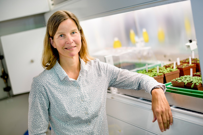 Prof. Dr. Danja Schünemann