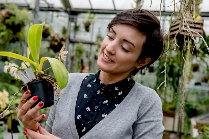 Junge Frau im Gewächshaus betrachtet eine Pflanze, die sie in der Hand hält