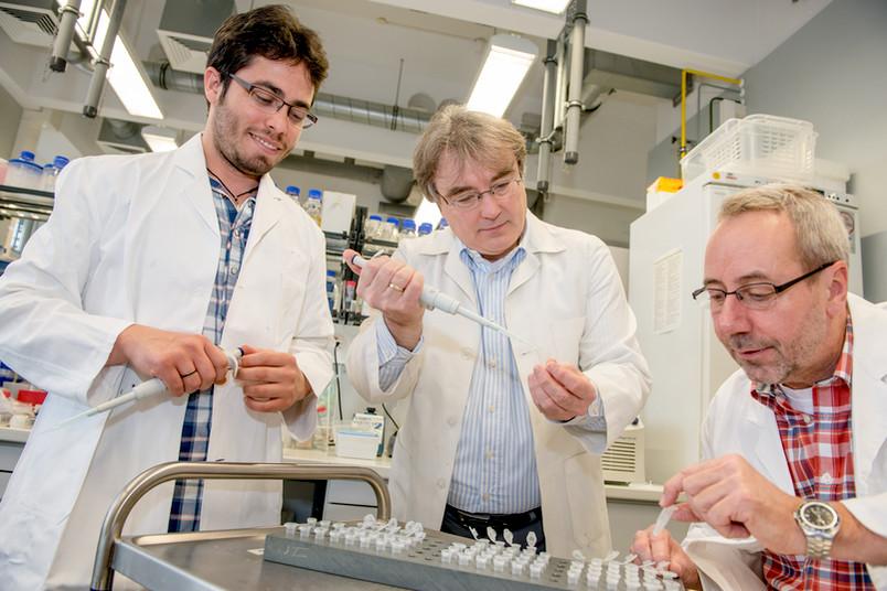 Drei Forscher arbeiten im Labor.