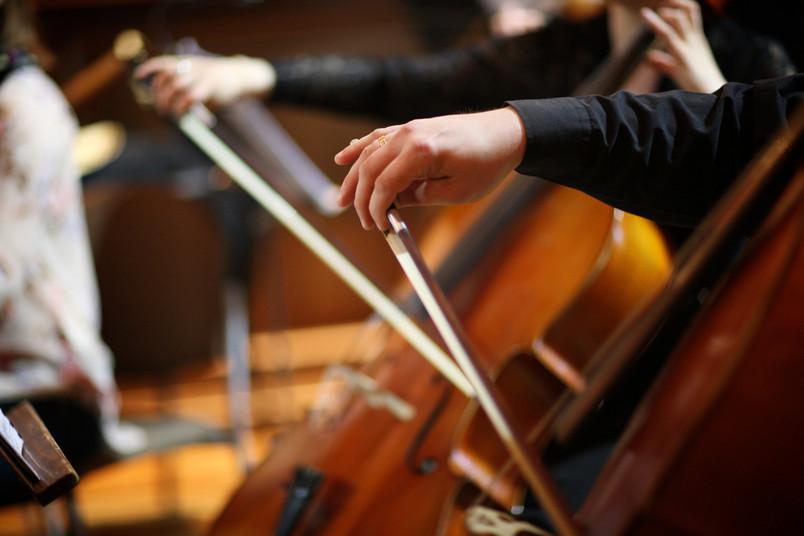 Orchestermusiker in Nahaufnahme.