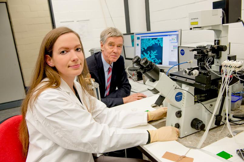 Zwei Personen im Labor am Mikroskop