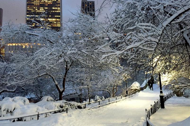 Schneelandschaft in einer Großstadt (New York, Central Park)