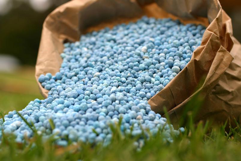 Blauer Dünger auf grünem Rasen