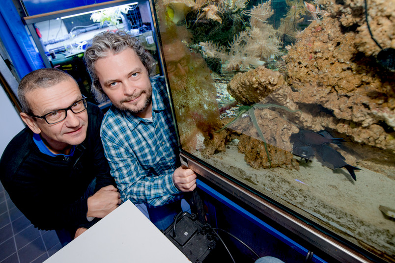 Zwei Forscher neben einem Aquarium