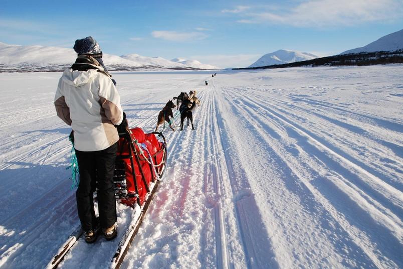 Ein Hundeschlittengespann fährt durch eine Schneelandschaft in Norwegen.