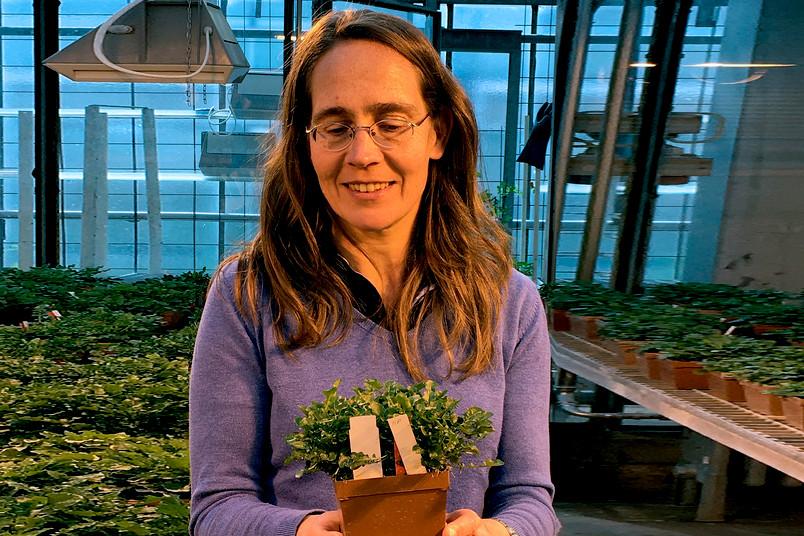 Porträt einer etwa 40-jährigen Frau mit einer Pflanze