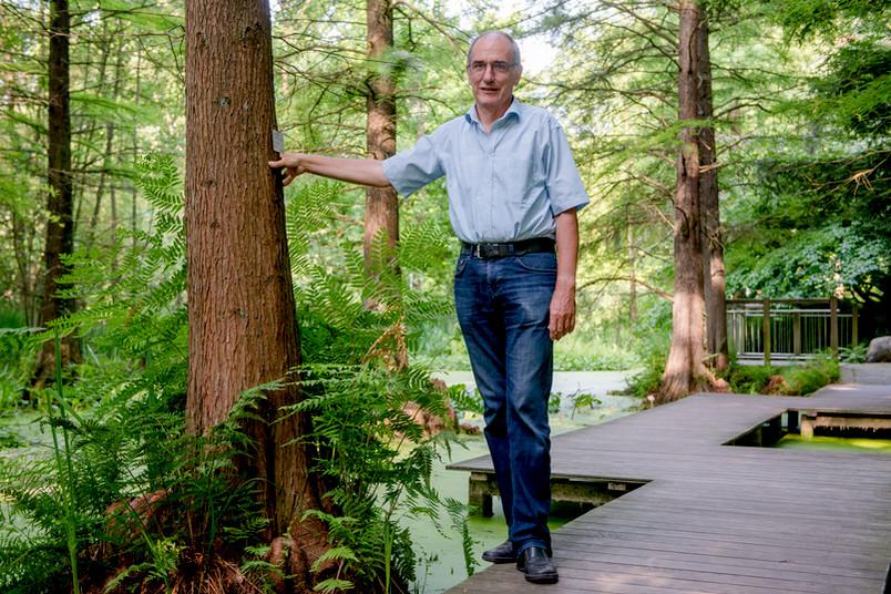 Mann zwischen Bäumen auf einem Steg