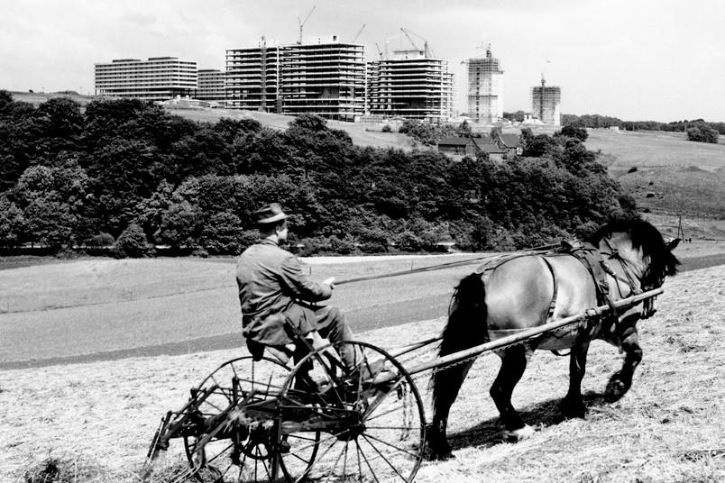 Bauer auf einem Feld
