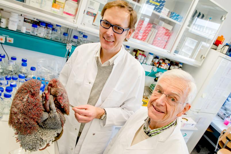 Zwei Forscher mit dem Modell eines Herzen