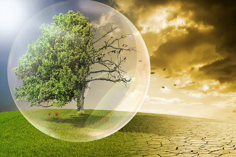 <div> Welche Maßnahmen sind jetzt erforderlich, um das Klima zu schützen?</div>