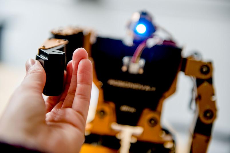 <div> Über das Spielerische hinaus: Wie wird unser Verhältnis zu Robotern aussehen?</div>