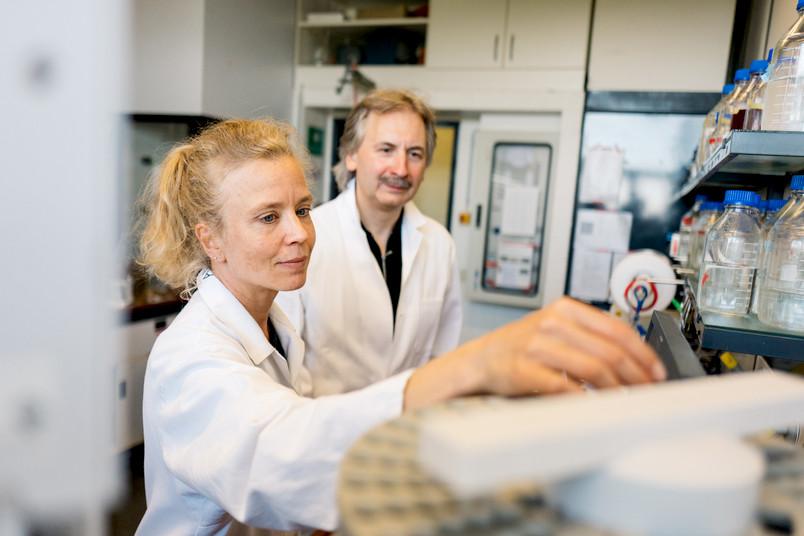 Anja Hemschemeier und Thomas Happe im Labor