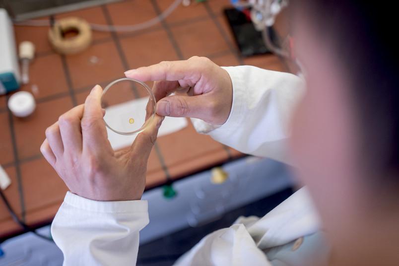 Getrockneter Tropfen in einer Petrischale