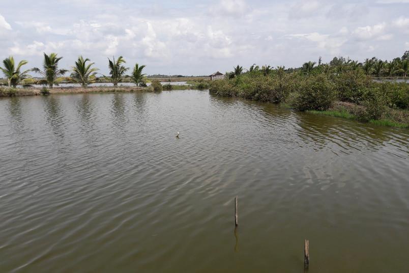 Typische Landschaft des Mekong-Delta