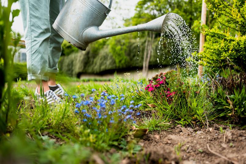 Gärtnerin gießt Blumen.