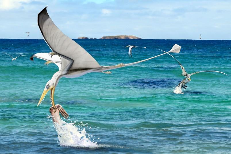 Flugsaurier schnappt Tintenfisch