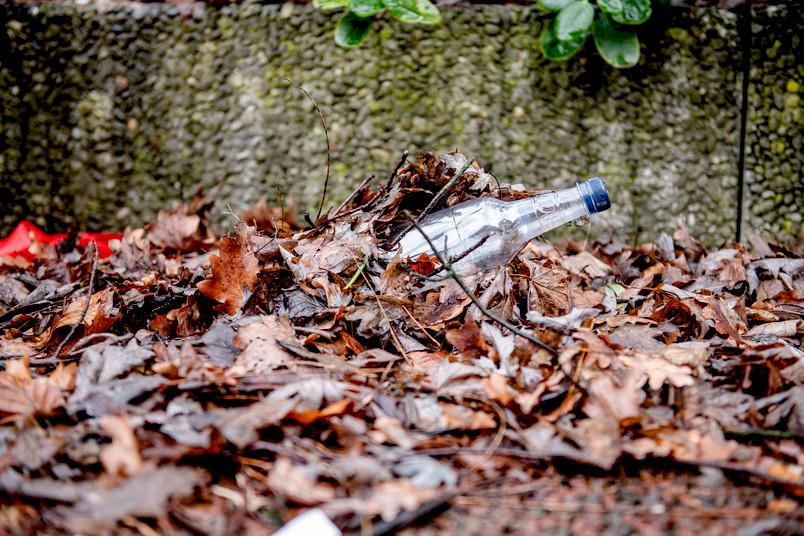 Plastikflasche liegt zwischen Blättern.