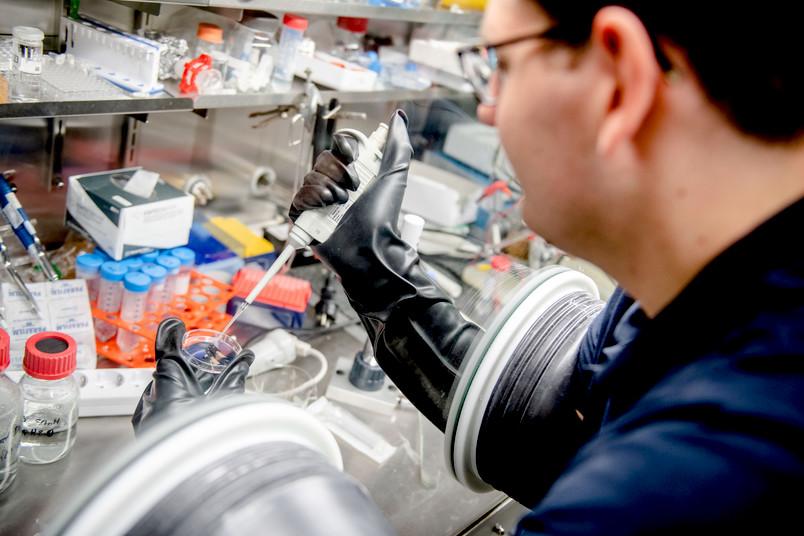 <div> Gemeinsam mit ihren Kooperationspartner arbeitet das Team vom Bochumer Zentrum für Elektrochemie an der Entwicklung neuer Katalysatoren.</div>