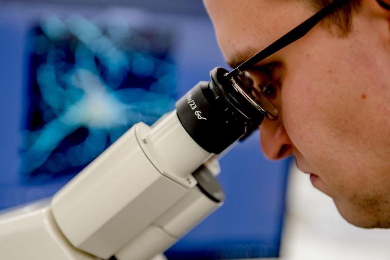 Forscher schaut in Mikroskop.