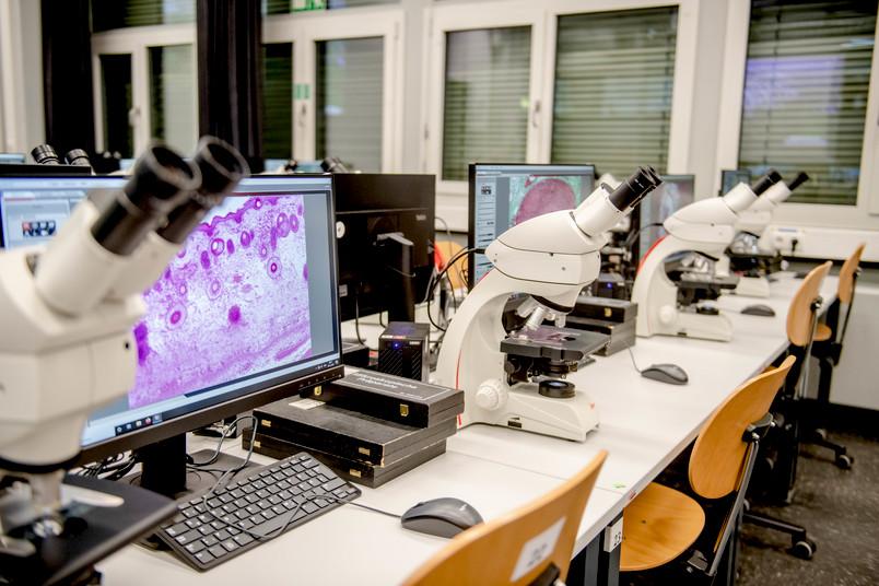 Mikrospok mit Bildschirm