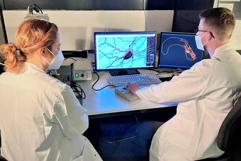 Zwei Personen vor einem Monitor mit einem Neuron