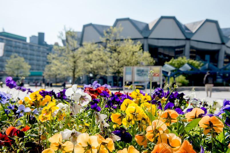 Frühling auf dem Campus der RUB