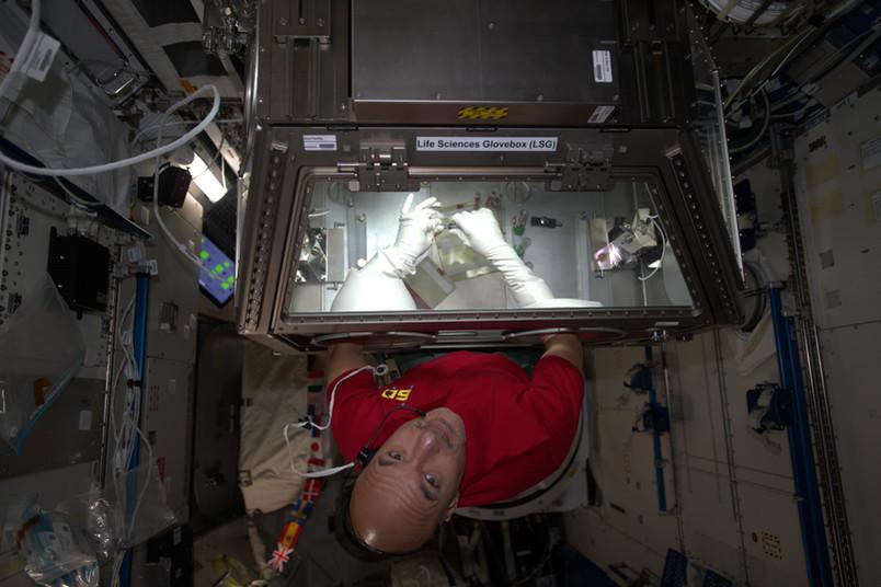 Astronaut mit den Händen in einer Box