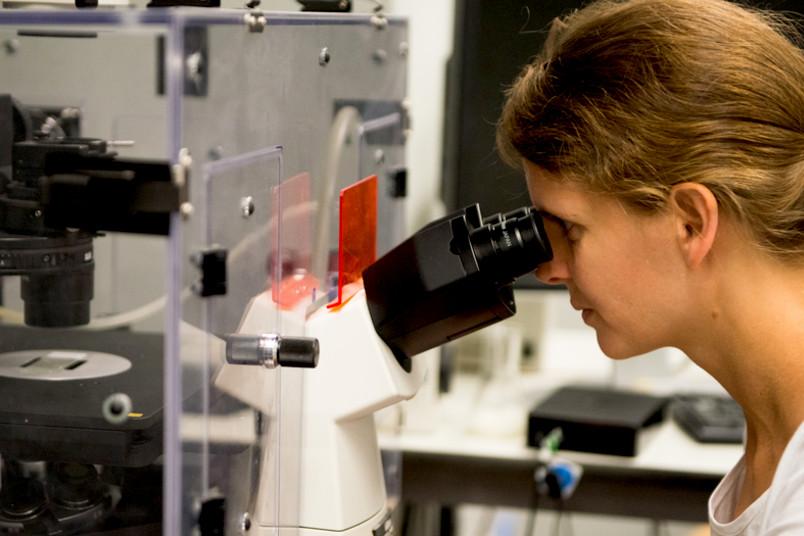 Forscherin guckt ins Mikroskop