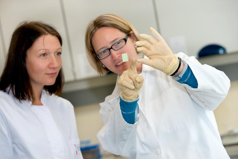 Astrid Friebe und eine Kollegin betrachten einen Objektträger mit einem Hirnschnitt.