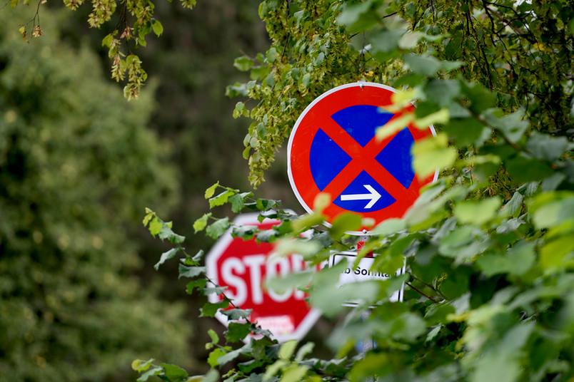 Zwei Schilder hinter Bäumen