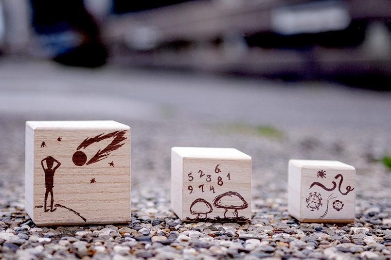 Drei Holzwürfel mit aufgemalten Pilzen, Zahlen, Viren, Menschen und Meteoriten