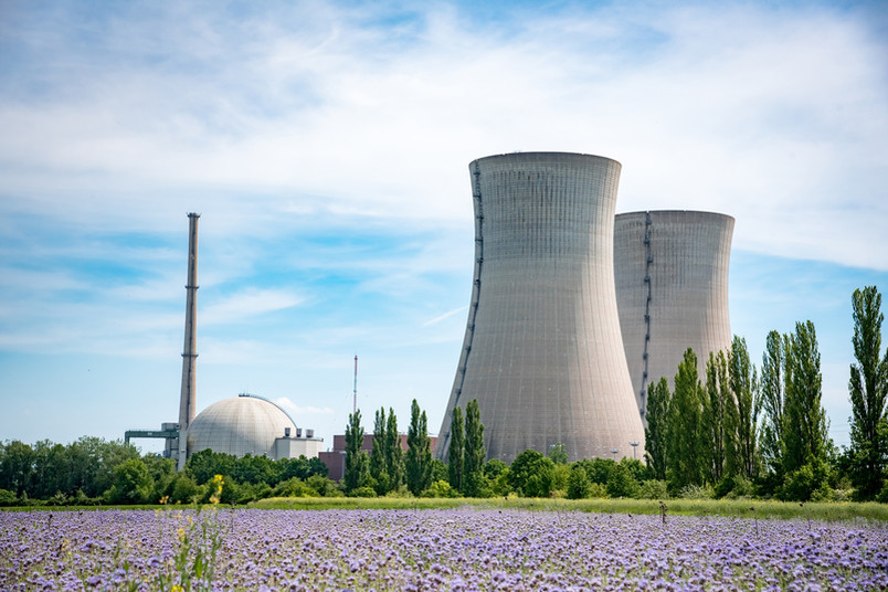 Blumenwiese vor einem Kernkraftwerk