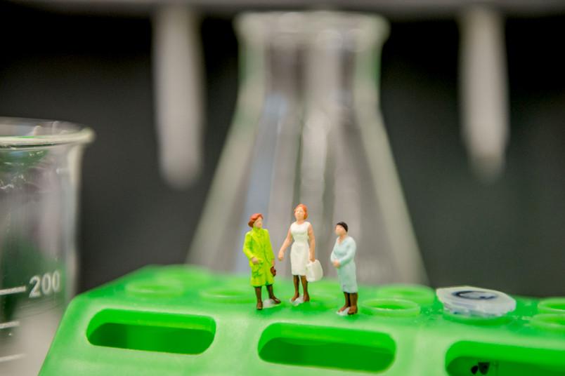 Kleine Figuren stehen auf einem Reagenzglashalter.