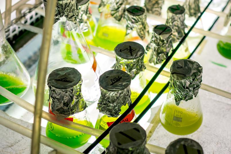 Kolben mit grüner Flüssigkeit