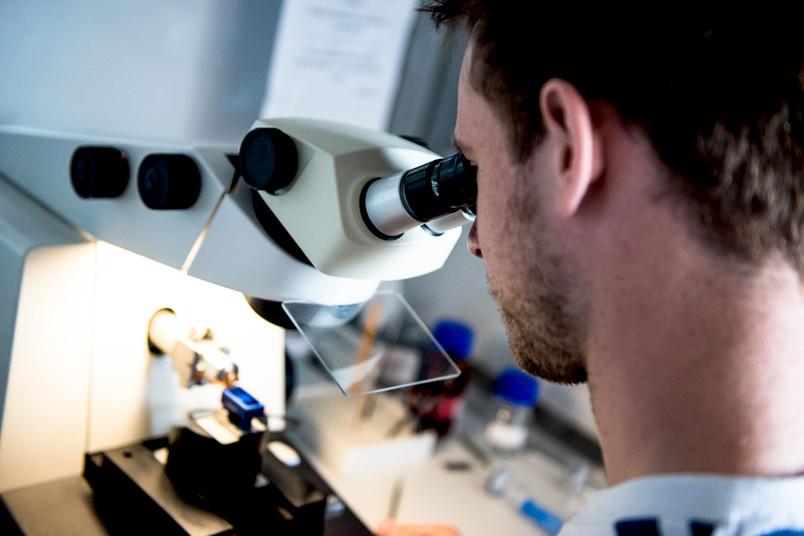 Mann schaut durch ein Mikroskop.