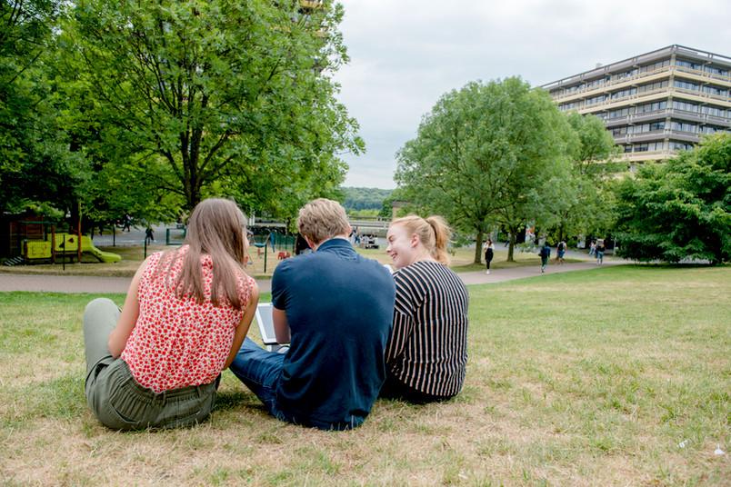 Studierende sitzen auf einer Wiese